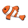Clownfish - Debbie Dadey, children's author of Mermaid Tales book series